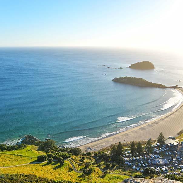 Spotlight on New Zealand