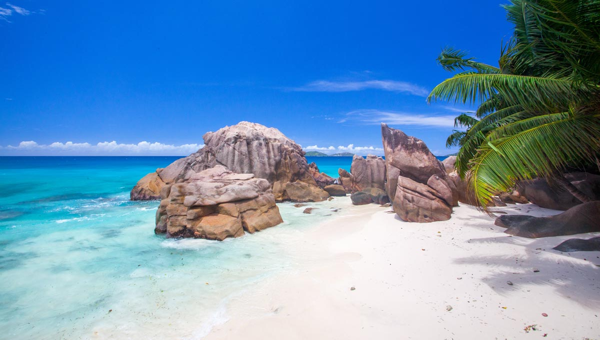 By captain's recommendation: The Seychelles