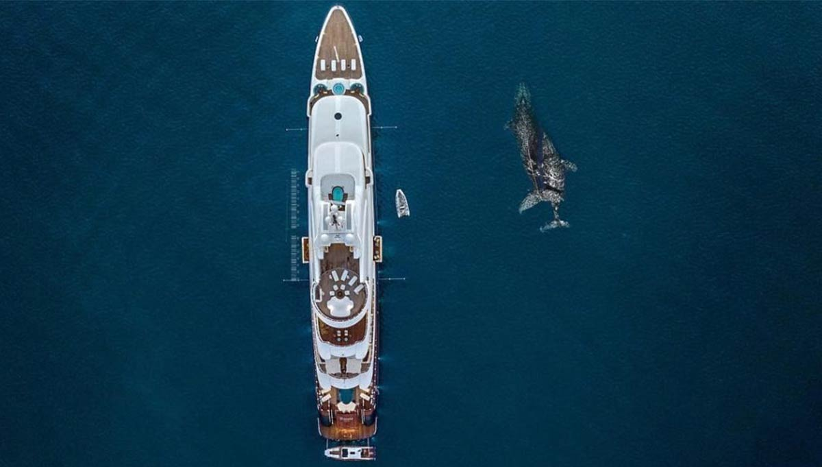 The yachting crowd unites to conserve the oceans